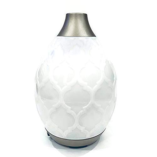 Young Living Essential Oil Home Ultrasonic Desert Mist Diffuser