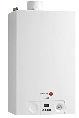 Fagor FC-24C N - Gas Natural calentador 23,6 kW, Potencia útil