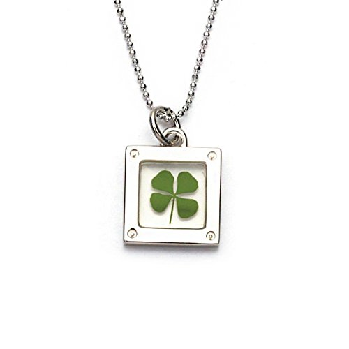 16' Pot (Stainless Steel Real Four Leaf Clover Clear Square Pendant Necklace, 16-18 inches)