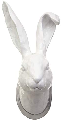 kieragrace St. Germain Olivier Resin Wall Décor - Hare Head, White Gloss (Big Heads Wall Decor)