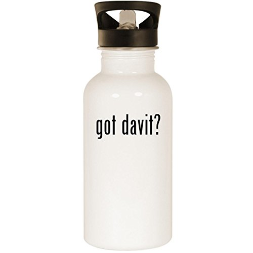 got davit? - Stainless Steel 20oz Road Ready Water Bottle, White
