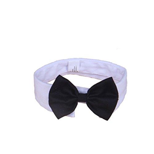QHGstore Cuello del animal doméstico de la pajarita del collar del gato del perro de perrito del Bowknot de la corbata del lazo de algodón ajustable Blanco y Negro S