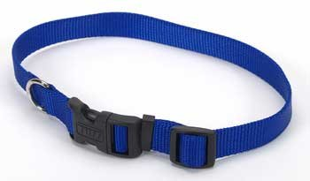 C Nyl Adjustable Tuff Collar Lg  1  Blue