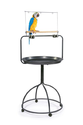 Play Perch - Prevue Hendryx 3183 Parrot Playstand, Round