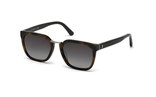 Tod's TO0148 - 56B Tortoise Square - Tod Sunglasses