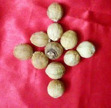 11 pcs peeli kaudi 11 pcs rakhta gunja,11 pcs laghu nariyal NOBILITY Mahalakshmi Set 11 pcs gomti chakra