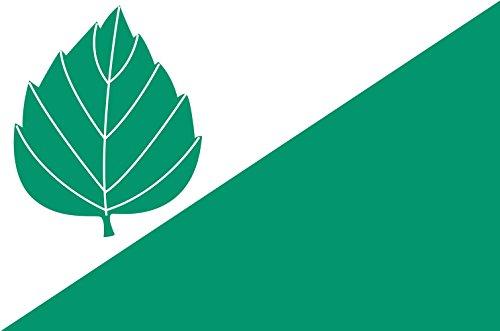 magFlags Large Flag B?ezina d?íve okres Ti?nov vlajka | B?ezina d?íve okres Ti?nov | Landscape Flag | 1.35m² | 14.5sqft | 90x150cm | 3x5ft - 100% Made in Germany - Long las (Ti Ba Iii)