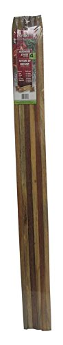 Bond Packaged Hardwood Stakes, 0.75'' x 0.75'' x 4'
