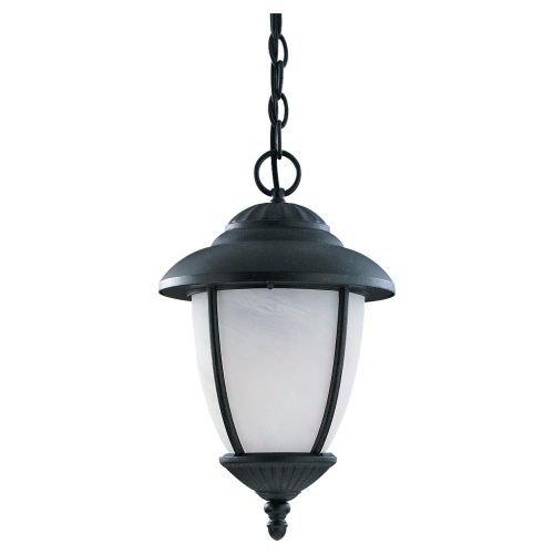 Sea Gull Lighting 69248PBLE-12 Yorktowne Energy Star Outdoor Pendant Light, Black
