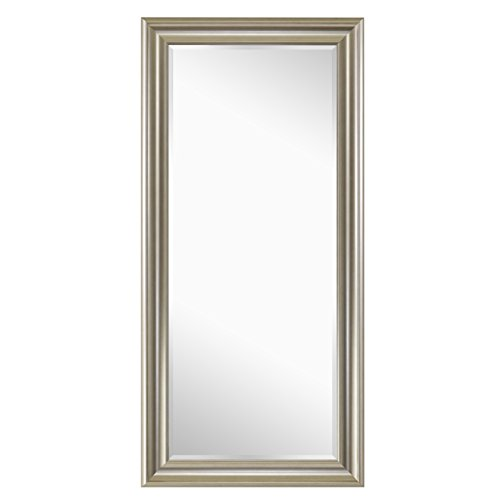 Naomi Home Framed Floor Mirror Champagne/65 x 31