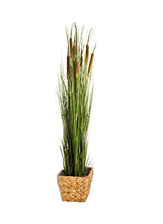 Amazoncom Piersurplus Artificial 47 In Reed Plant With Pot