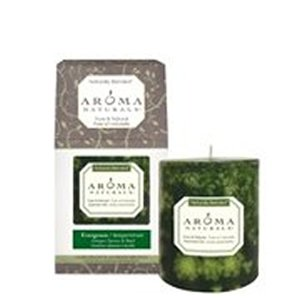 Aroma Naturals Holiday Candle (Aroma Naturals Holiday Candles Fresh Forest (Forest Green) Boxed Pillars 3