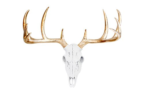 Wall Charmers Mini White + Gold Antler Faux Deer Skull - 16 inch Faux Taxidermy Animal Head Wall Decor - Handmade Farmhouse Decor