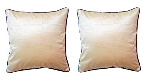 Cranberry Set of Two Premium Luxury Dupion Silk Throw Pillow Covers/Cushion Covers for Decorative Living Room Couch Sofa Car with Hidden Zipper 16x16 inches / 40x40 cm Brown Piping on Cream (Cushion Dupion Silk)