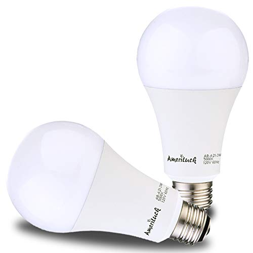 3 Way Led Light Bulb Daylight in US - 1