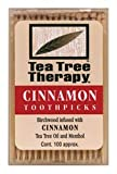 Tea Tree Therapy Cinnamon Toothpicks (12×100 CT)