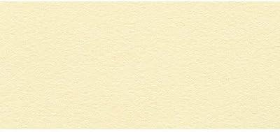 BFK Rives Printmaking Paper in Gray Set of 10