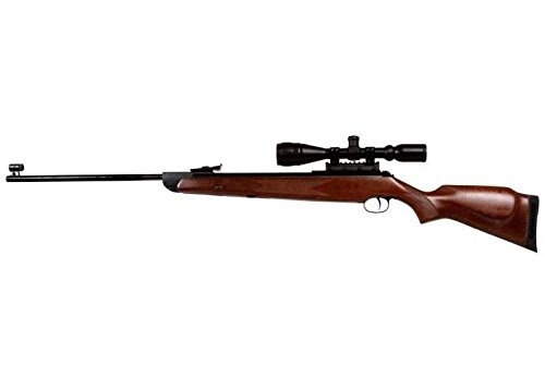 Diana RWS 350 Magnum Striker Combo, .22, TO6 air rifle