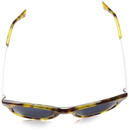 para Azul Police Shiny Brown Havana Gafas Sol de Hombre tXtxwUqz6