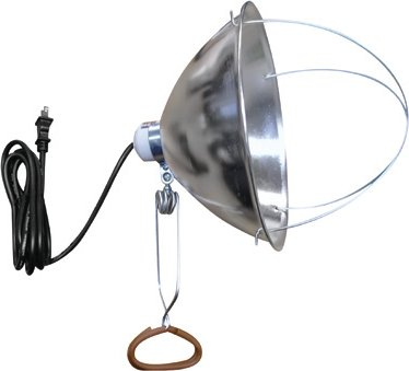 Brooder/Heat Lamp With Clamp