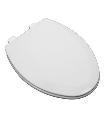 longated Closed Front Toilet Seat and Lid, White by ProFlo (Proflo Air)