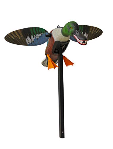 (MOJO Outdoors Spoonzilla Shoveler Duck Motion Decoy)