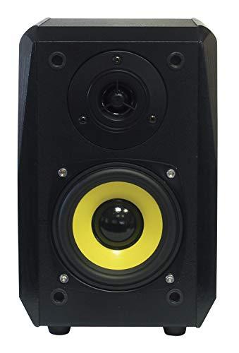 Dynavox TG-1000B rek-luidsprekers, 50 W, paar, zwart