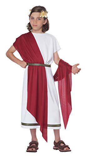 Ancient Rome Costumes (California Costumes Basic Toga Child)