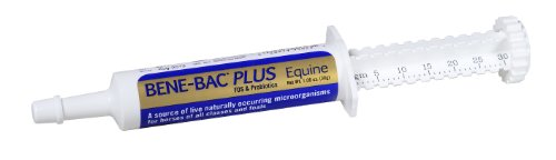 Bene-Bac, Plus Equine Gel - 30gm
