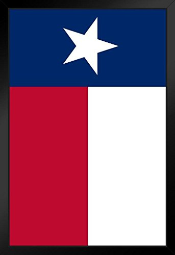 Texas Lone Star State Flag Framed Poster 14x20 inch