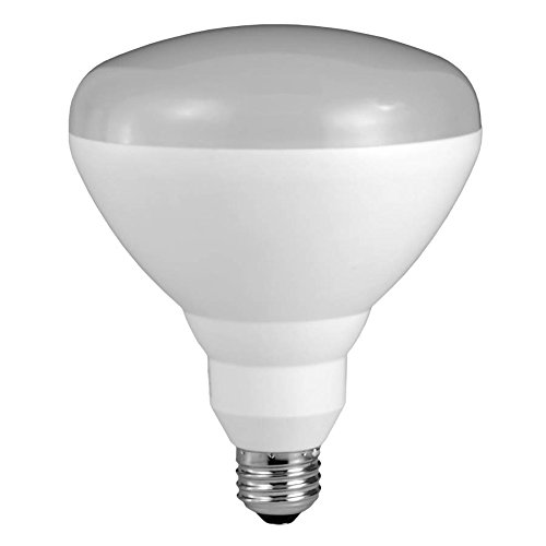 Sylvania Ultra High Output LED 85 W Indoor/Outdoor Buld Natural Daylight