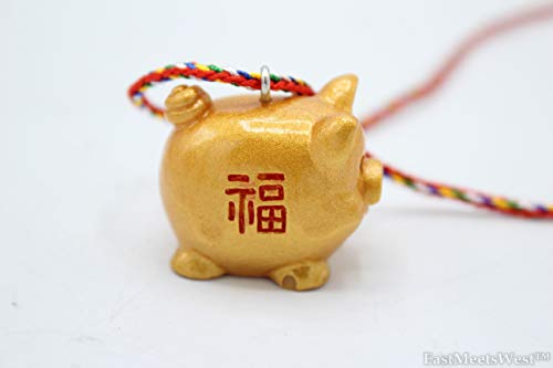 (EastMeetsWest Chinese Feng Shui Protection Boar | Pig Zodiac Year of Boar | Pig Emperor Coin Good Fortune Pig Necklace Hanging Charm Ornament )