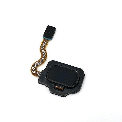 Finger Sensor - Professional Equipment