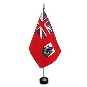 The Online Stores Bermudas 8x 12inch Stick bandera
