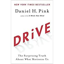 Drive 1st (first) edition Text Only