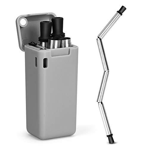 Hydream F Collapsible Reusable Stainless Steel, Foldable Drinking Straws Keychain Final Folding Premium Food-Grade Portable Set with Hard Case Holder Clea, Small, Gray
