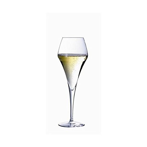 CHEF ET SOMMELIER Aromup 21cl Champagne Flute Set of 6 ARQUES INTERNATIONAL U1951