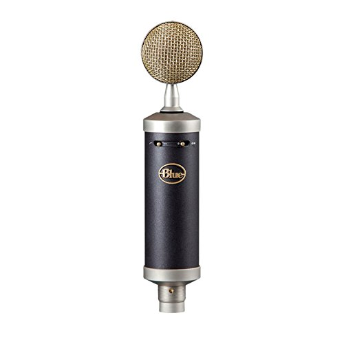 Blue Microphones Baby Bottle SL Large-Diaphragm Condenser Microphone