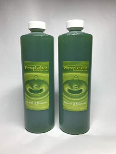 Live Marine Phytoplankton - (2) 16oz Bottles