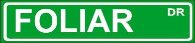 novelty-foliar-street-sign-4x18-aluminum-wall-art-man-cave-garage-decor