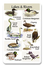Birdsong Card - Identiflyer Songcard - Birds of Lakes & Rivers