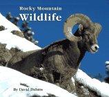 Rocky Mountain Wildlife (Rocky Wildlife Mountains)