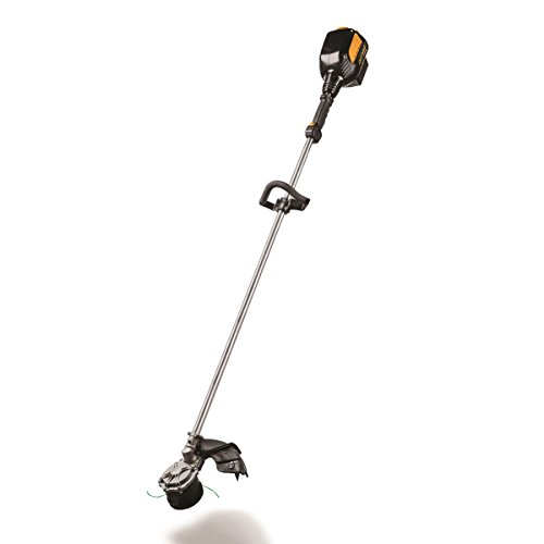 Cub Cadet CCT 400 Grass Trimmer by Grass Trimmer