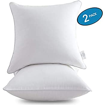 Amazon Com Moma 18 X 18 Pillow Inserts Set Of 2 Throw