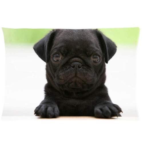 """Black Pug Puppies Custom Zippered Pillow Cases Soft and Confortable 20""""x 30"""" (Twin Sides)"""
