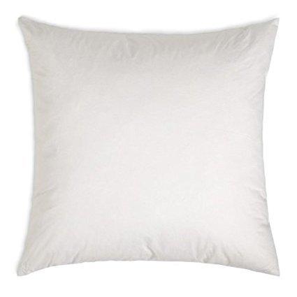 Multiple Sizes - Polyester Pillow Form Insert (23