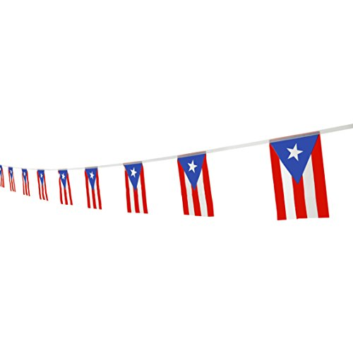 Kind Girl Puerto Rico Flag Puerto Rican Flag,100Feet/76Pcs National Country World Pennant Flags Banner,Party Decorations Supplies For Olympics,Bar,Indoor and outdoor flags,International Festival (Puerto Rico Party Decorations)
