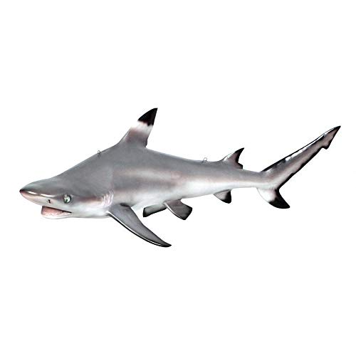 Design Toscano Blacktip Shark Ceiling Mount Trophy Sculpture