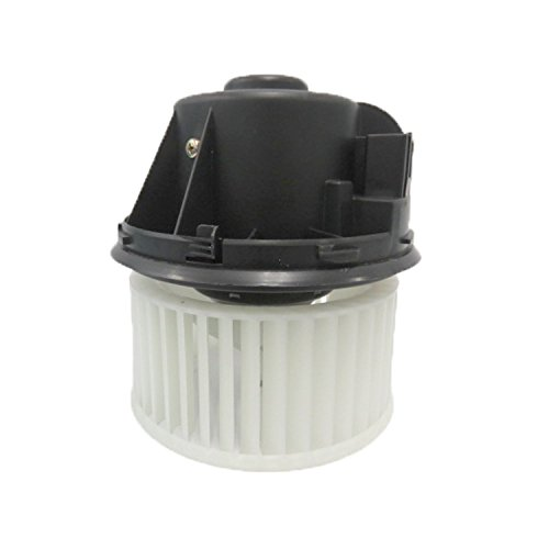 (TYC 700272 Ford Replacement Blower Assembly)