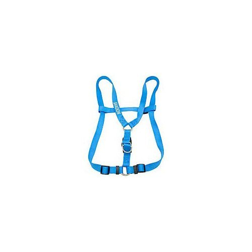 Dickens' Closet Large Personalized Harness in Blue Lagoon